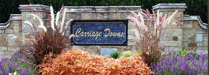 Carriage Downs